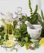 Сбор и продажа лекарственных средственных травок и растений